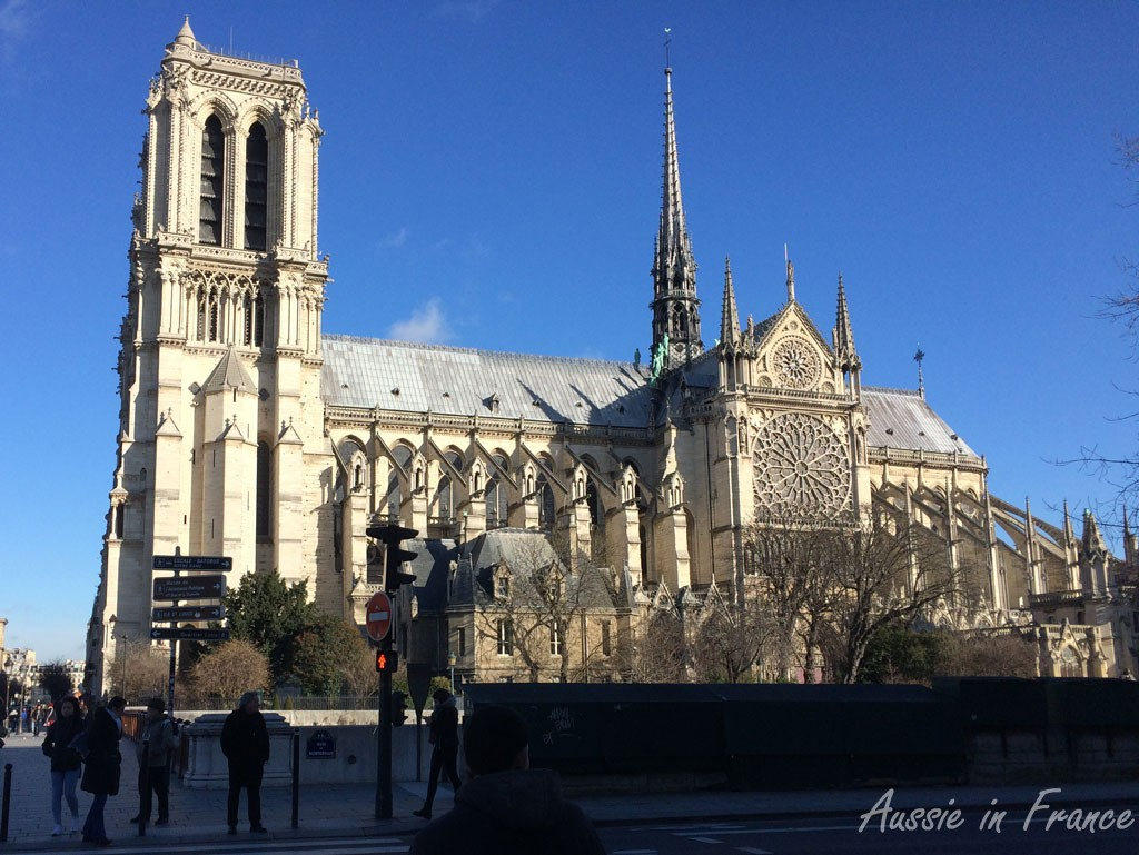 Driving past Notre Dame on our way to Au Vieux Campeur