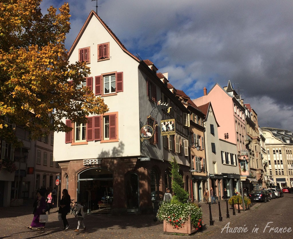 A typical street in Colmar