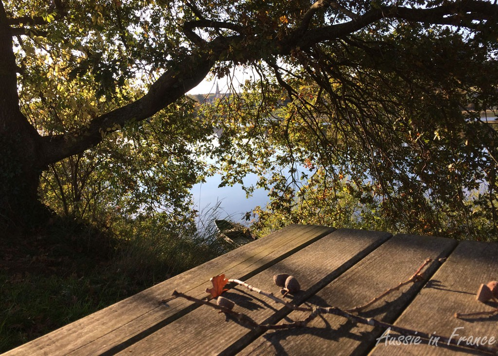 The picnic table with acorns and an old boat