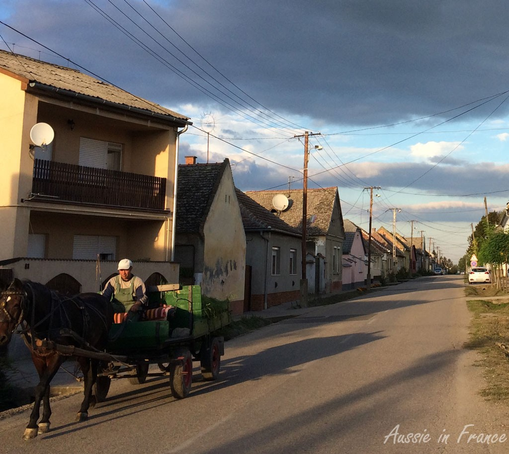 A horse and cart in the main road of Szemble