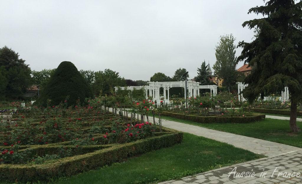 A rose garden along the canal