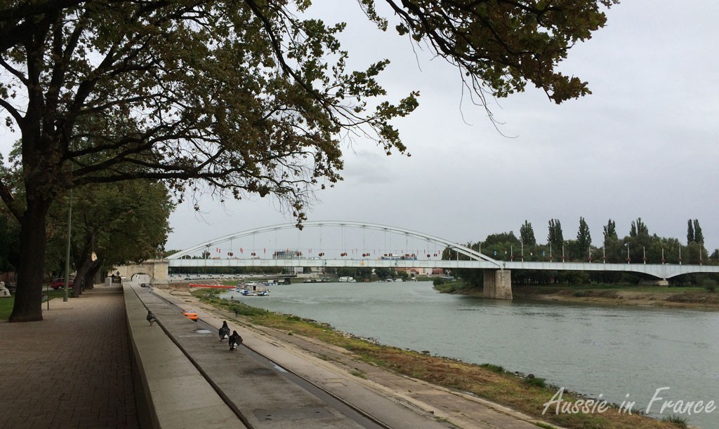 Along the Tizsa River