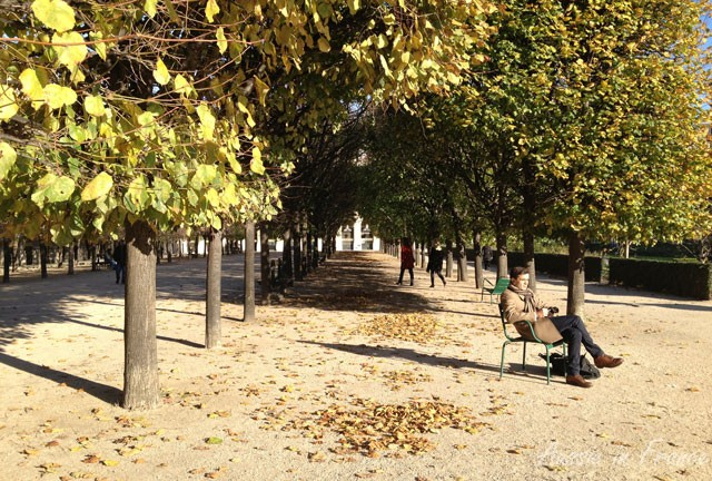 autumn_palais_royal
