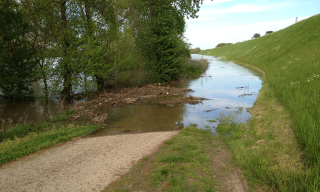 Water on the bike path along the Loire from Blois to Saint Dyé