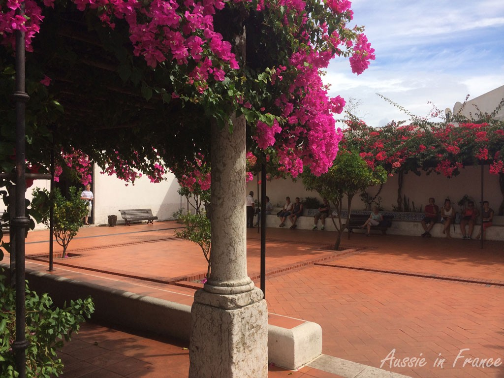 Bougainvillia-coverd courtyard of Monastero