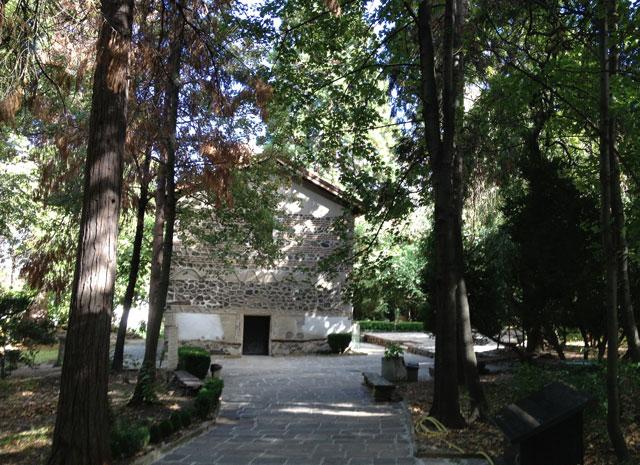 The leafy approach to Boyana Church