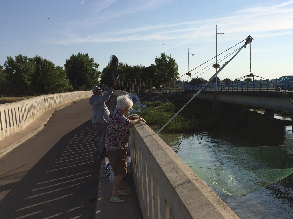 Fishing with square nets on the bridge