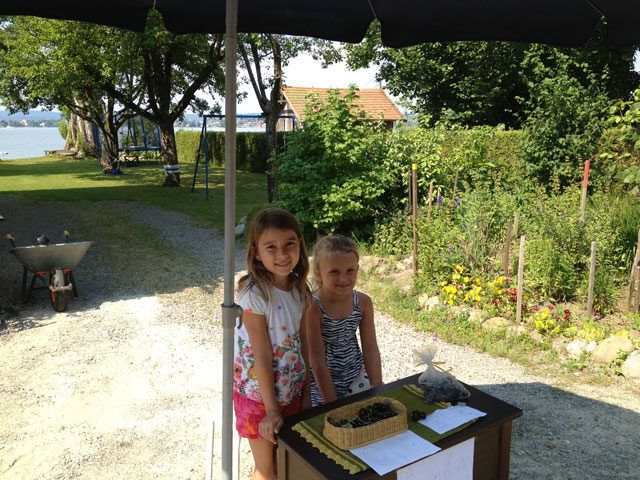 Two little Swiss girls selling cherries in front of their house - with Mum sunbathing in the background!