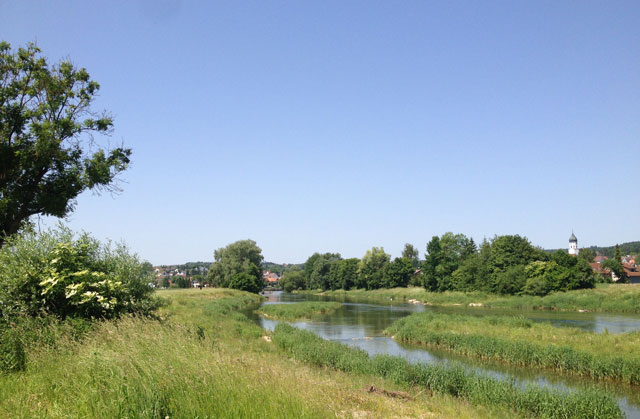 Typical scenery along the Danube with a church bulb in the distance