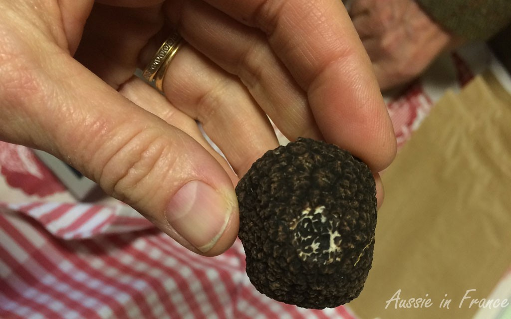 First category truffle