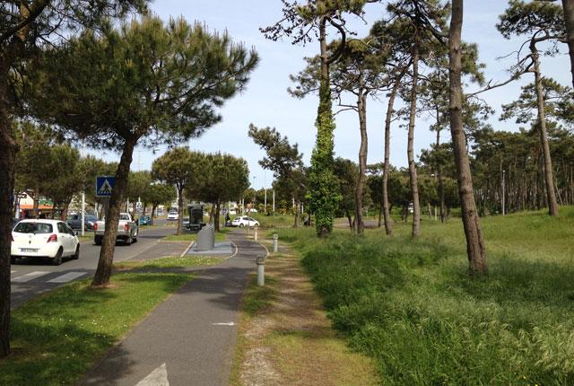 The flat path