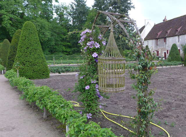 Flower & vegetable garden at Chenonceau with clematis in bloom