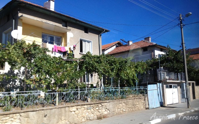 Grape vines on the otherwise unattractive houses