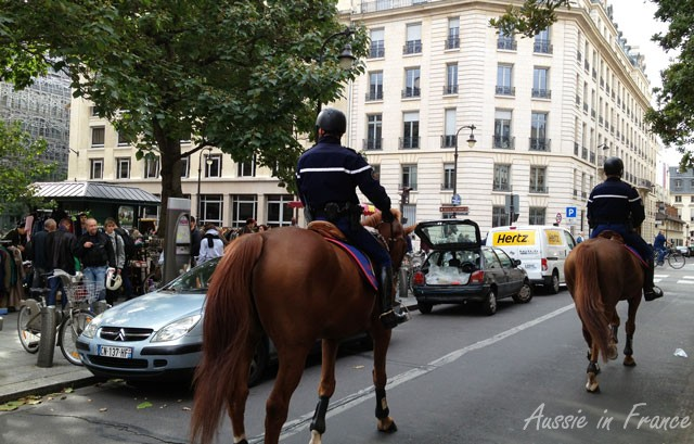 A little visit from the mounted police
