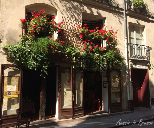 Totally irrelevant photo taken in Rue Tiquetonne. I wish my geraniums would grow like that!