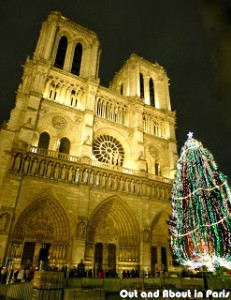 notre_dame_tree