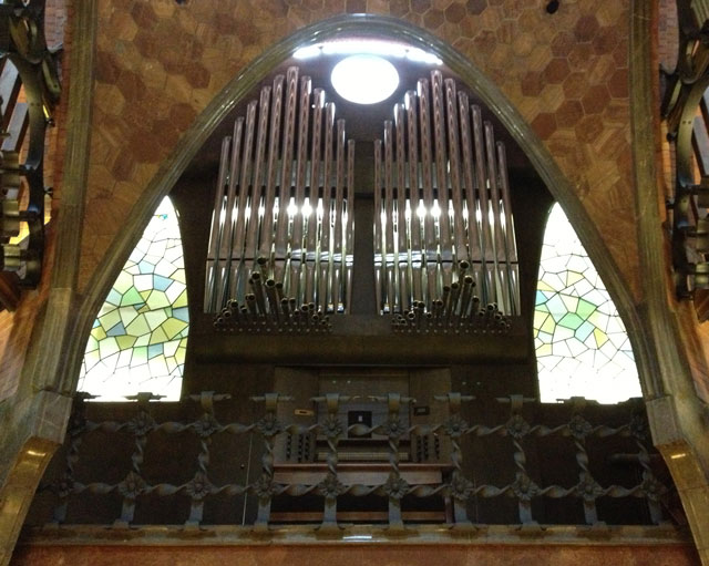 Guell's private organ