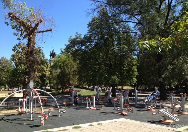 This is the best outdoor gym equipment I've ever seen in a public park