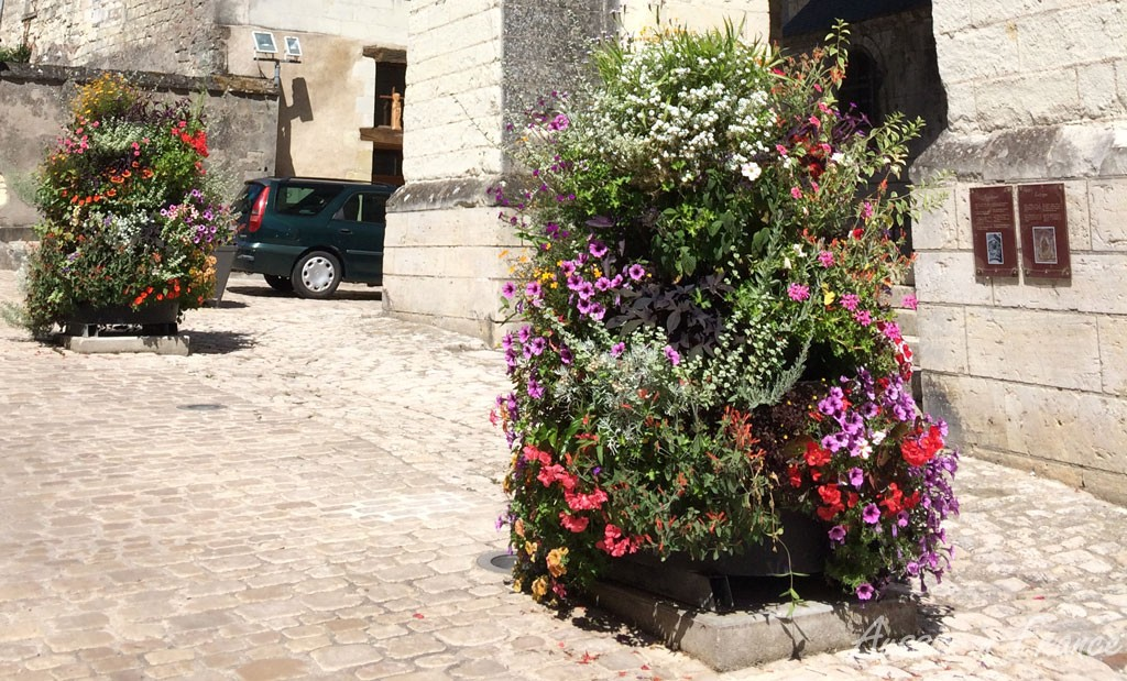 One of the many luxuriant flower pots in Saint Aignan