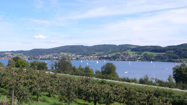 View of Lake Constance cycling down to Stein am Rein