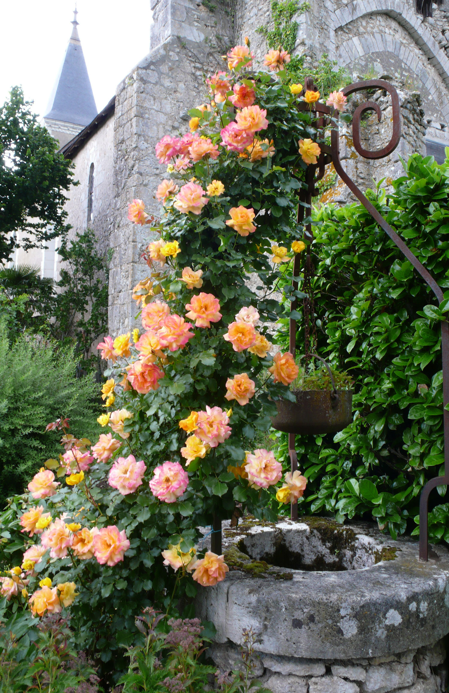 A rose garden in a priory aussie in france for Art and decoration france