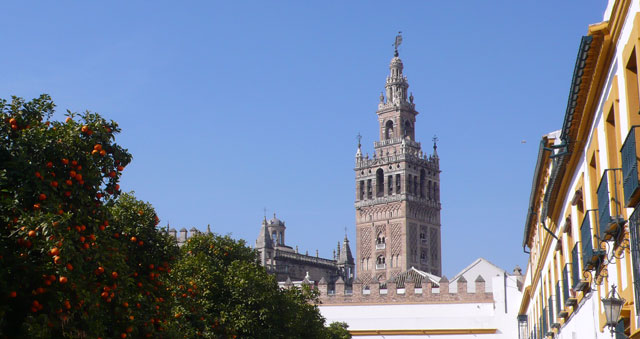 Seville during orange season