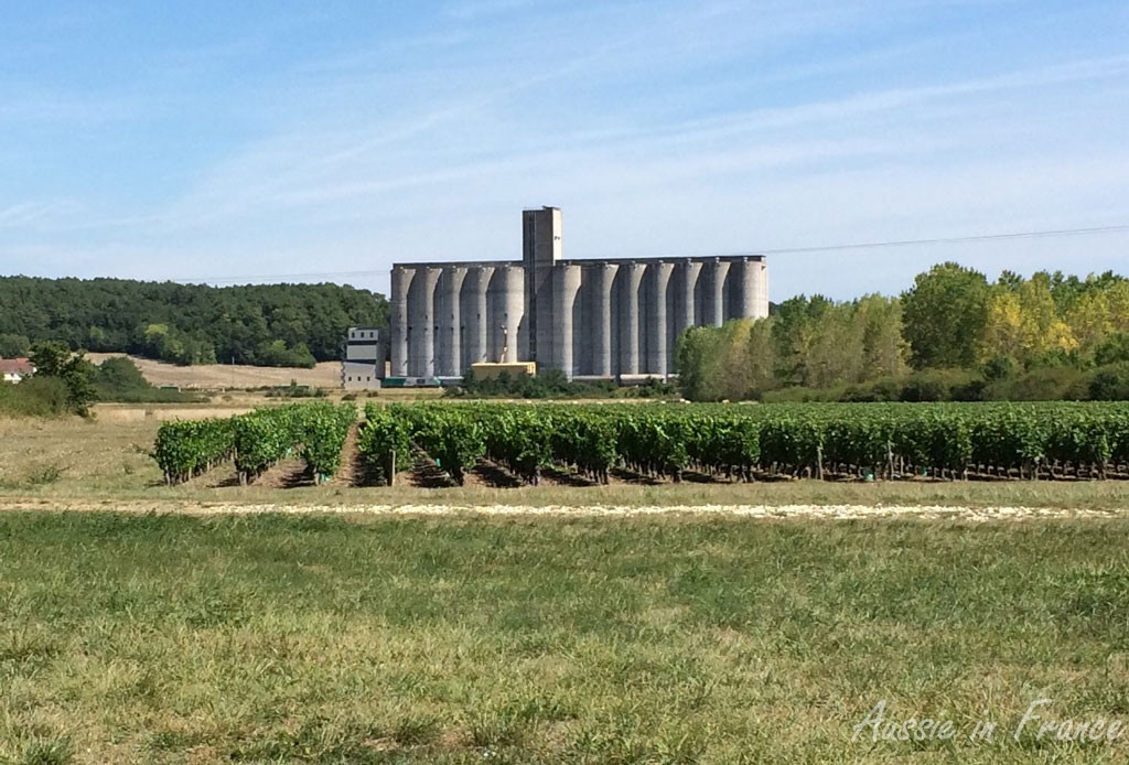An enormous grain silo with a vineyard in front