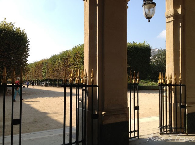 Fine and sunny in the Palais Royal gardens