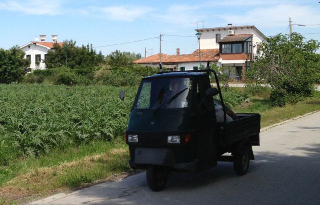 Three-wheeled pick-up next to an artichoke field on Erasmo