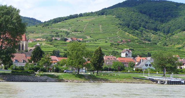 Vineyards on the hills in the Wachau