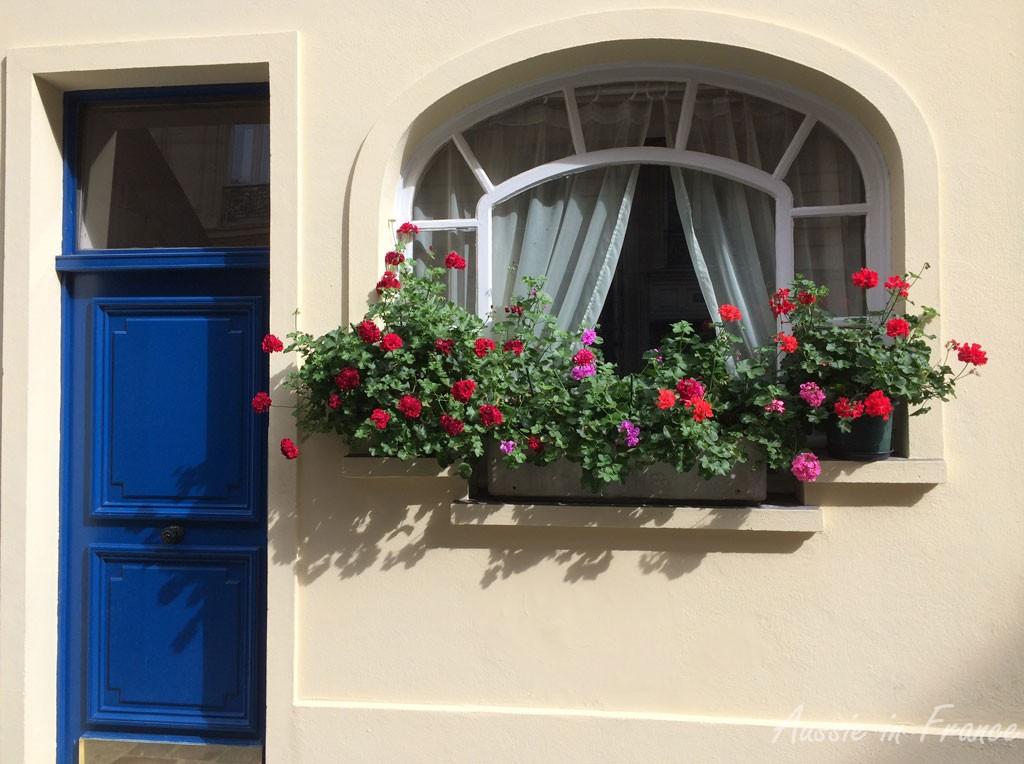 Window box in rue Saint Denis