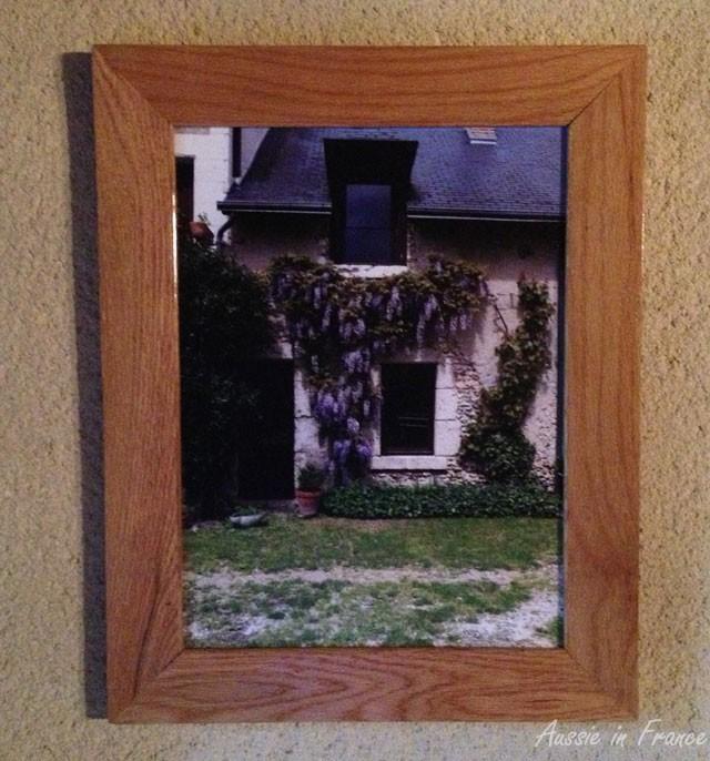 wisteria_framed