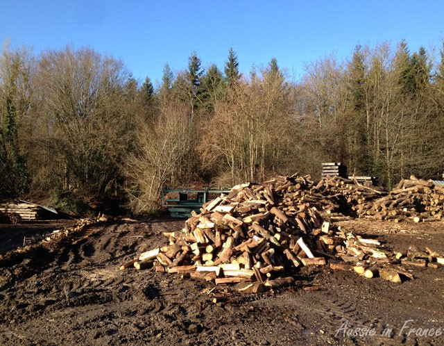 The pile of wood we are to help ourselves to